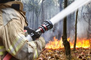 Fireman using a fire hose to put out a bush fire